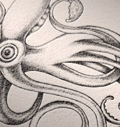 Octopus-emboss