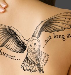 Tattoo-owl