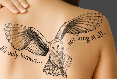 Tattoo-owl